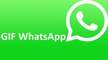 WhatsAp supporta GIF su iOS e Android